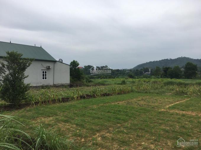 Đất huyện Ba Vì 600m2 gần nhiều resort