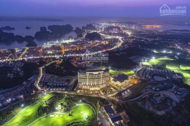 Bán biệt thự đồi FLC Hạ Long Quảng Ninh