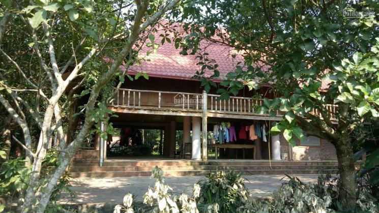 Bán đất TC Lương Sơn Hòa Bình 1.1ha, 20m mặt đường xóm làm trang trại nghỉ dưỡng, giá rẻ 0962792687