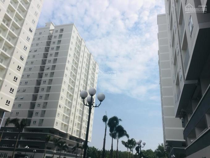 Căn hộ Orchid Park đủ diện tích, giá tốt, Vietcombank hỗ trợ cho vay 70%, nhận nhà vào ở ngay.
