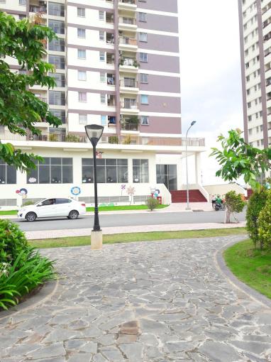 Giá sốc bán chung cư Vision Bình Tân giá rẻ căn góc bao đẹp đến là thích ảnh 0