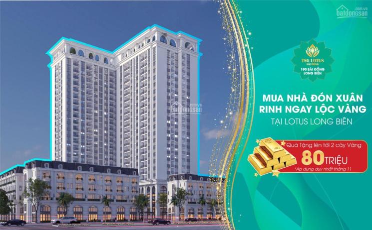 Chung cư cao cấp TSG Long Biên 190 Sài Đồng CĐT hỗ trợ 105tr, CK 3.5%, LS 0%/12 tháng - 0972995695