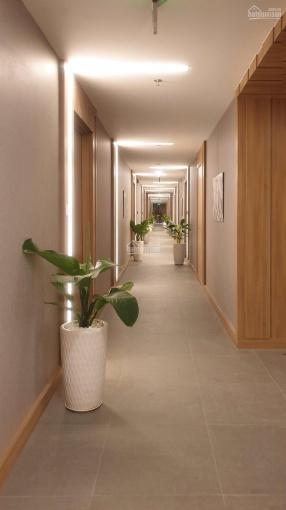 Bán căn hộ full nội thất view sân bay Republic Holiday Inn giá 2,35 tỷ LH 0969200085 ảnh 0