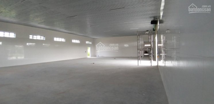 Cần bán nhà xưởng 5623.5 m2, Hiệp Thạnh, Gò dầu , Tây ninh