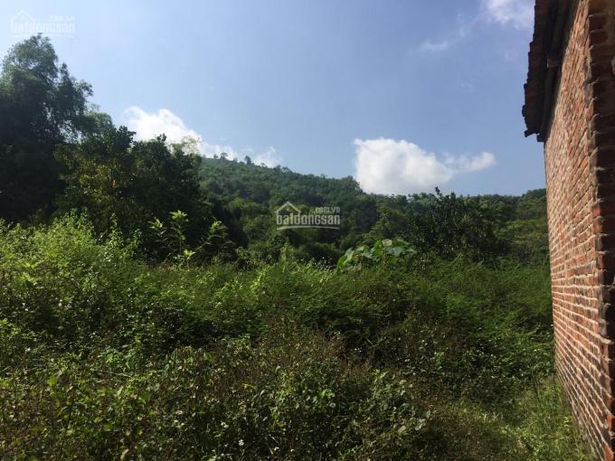 Chính chủ cần chuyển nhượng lô đất thổ cư tại thôn Đồng Bèn - Xã Đông Xuân - Quốc Oai - Hà Nội