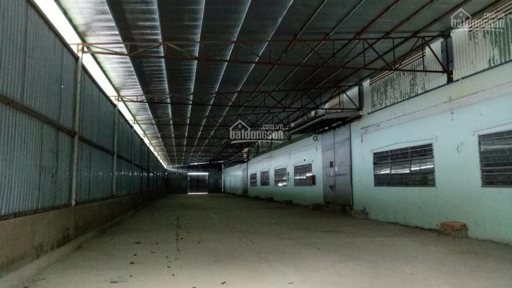Cho thuê xưởng đường Trần Đại Nghĩa, Bình Tân, MT đường rộng, không ngập úng 860m2, 64tr/tháng