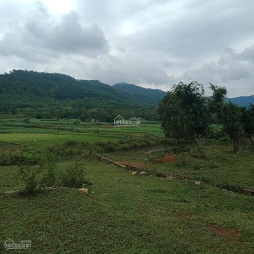 1541m2 nghỉ dưỡng view cánh đồng, đồi núi đẹp xã Yên Bài. Giá 300tr/sào