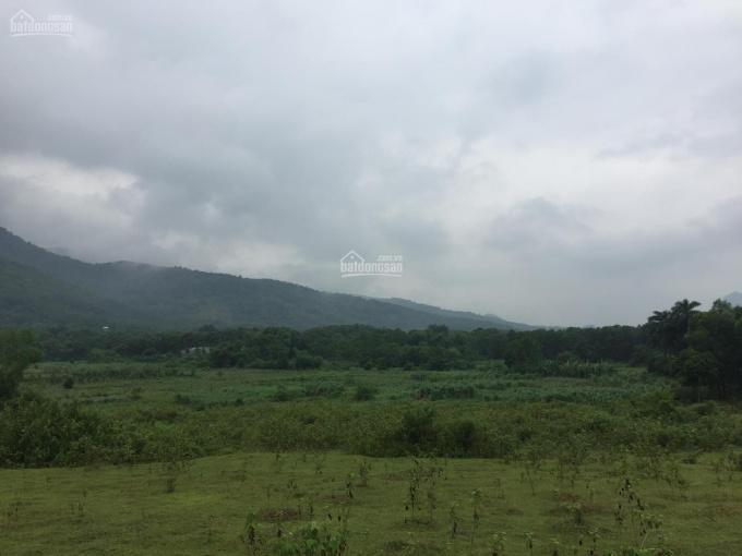 Bán lô đất 15000m2 đất làm trang trại nhà vườn khu nghỉ dưỡng cuối tuần tại Cư Yên, Lương Sơn, HB