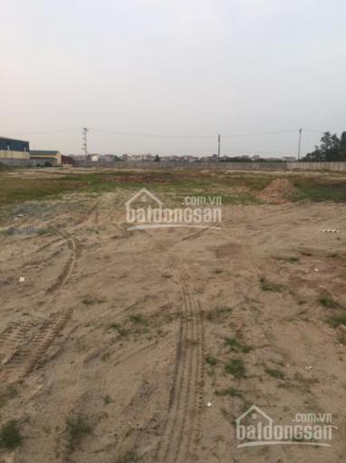 Đất công nghiệp Thuận Thành Bắc Ninh DT 1.2 ha chỉ 2.5 triệu / m2