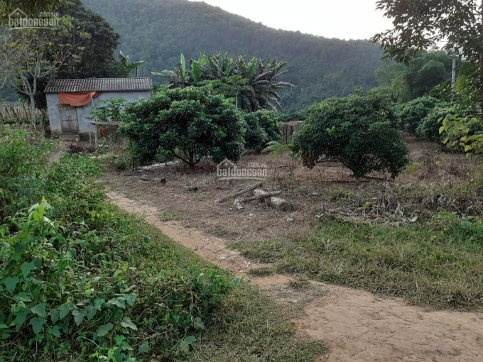 Bán 1ha đất trang trại bám suối có 1000m2 thổ cư tại Lương Sơn giá 900triệu.