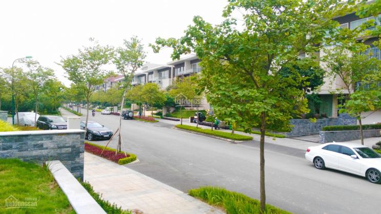 Bán Biệt Thự Khu Q Ciputra giá 103tr/m2 Hoàn Thiện Nội Thất - Nhà Chính chủ