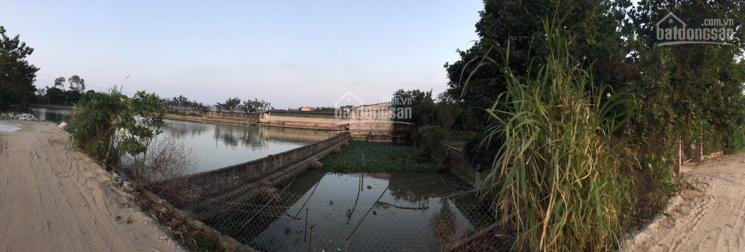 Bán 5441 m2 Đất Nông nghiệp lại Đồng Lại Vĩnh tuy, Bình Giang , Hải Dương