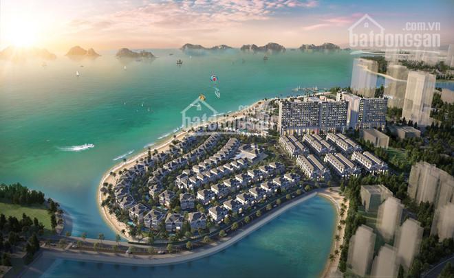 Bán biệt thự 4 tầng, mặt tiền 6.5m, trung tâm du lịch, cho thuê lợi nhuận cao