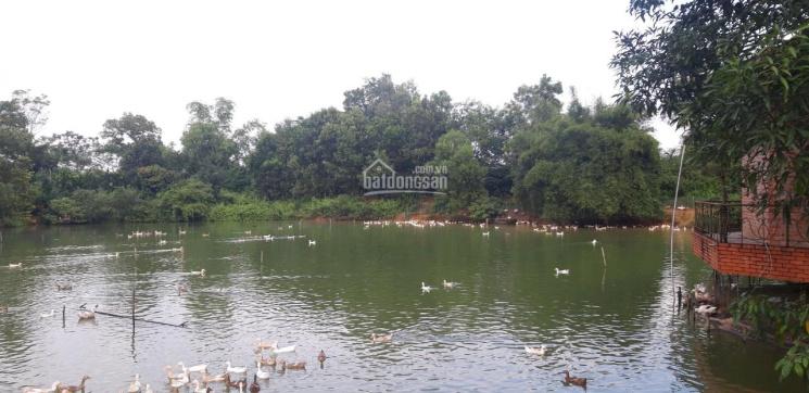 Siêu phẩm đất thích hợp nghỉ dưỡng 13000m2 sát hồ Đồng Mô giá rẻ chỉ hơn 1tr/m2. LH 0976899058