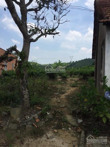 Bán 1500m2 đất xây biệt thự, Lộc Châu, Bảo Lộc