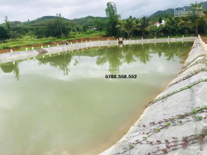 bán vườn bưởi 2.800m2 gần đường QL27C Nha Trang-Đà Lạt, cụm công nghiệp Sông Cầu LH 0899.37.37.88