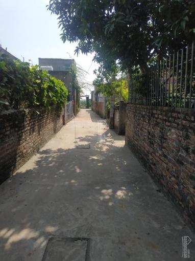 Bán đất Đan Kim, Liên Nghĩa, Văn Giang, Hưng Yên gần học viện bóng đá PVF, LH: E Minh 0916247433