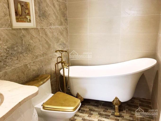 Cần bán căn hộ chung cư the Flemington, Q11, 220m2, 4pn, full NT, 10 tỷ 0933033468 Thái view đẹp