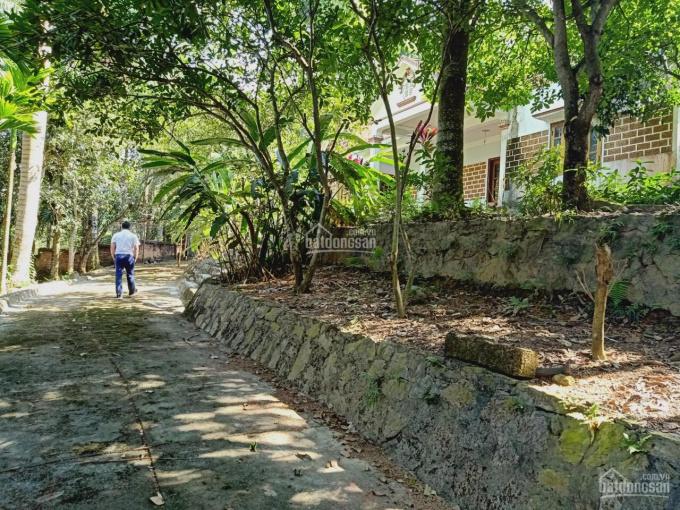 Cần bán lô đất 3848m2 đã có khuôn viên nhà vườn hoàn thiện giá hợp lý tại Cư Yên, Lương Sơn, HB