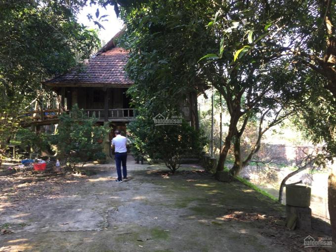 Cần bán lô đất 4850m2 đã có khuôn viên nhà vườn hoàn thiện vị trí đẹp tại Cư Yên, Lương Sơn, HB