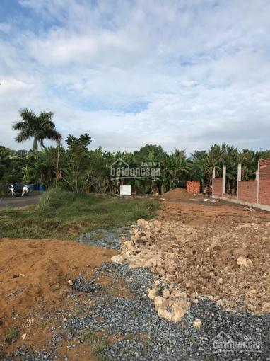 Bán đất 22x24.64m, xã Phú Hữu, H. Nhơn Trạch, T. Đồng Nai, hướng Bắc, 6.4 tỷ 0933182463 Lê Duy