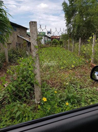 Bán nền đất thổ cư tại Thanh Ba, xã Mỹ Lộc, huyện Cần Giuộc, DT 5x19m ảnh 0