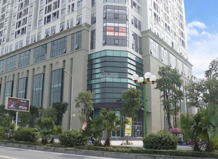 Chính chủ cho thuê 4 lô mặt bằng tầng 5, tòa Roman Plaza, Hà Đông. LH 0985.430.945 hoặc 0246.29.28