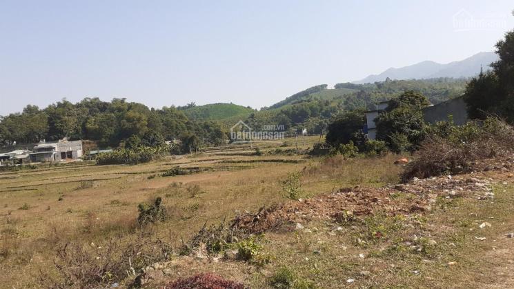2.1ha đất sinh thái siêu vip, view cánh đồng đẹp miễn chê tại Lương Sơn, Hòa Bình, cần bán gấp