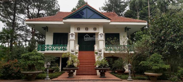 Bán gấp biệt thự ven hồ cực đẹp tại Lương Sơn, Hòa Bình, DT 6100m2, LH 0965.368.616