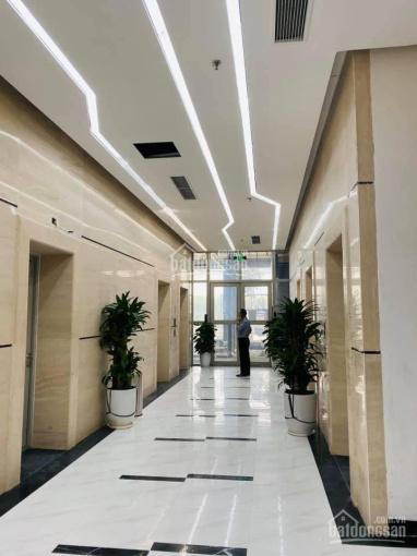 Chính chủ cần bán căn M2 1910 dự án 6th Element giá tốt 3,6 tỷ