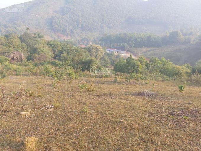 2600m2 nghỉ dưỡng thế đất đẹp tuyệt vời tại Tiến Xuân, Thạch Thất với giá chỉ hơn 1tr/2, 0976899058