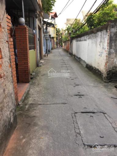 Chính chủ bán đất Làng Cam, Cổ Bi, DT: 58.2m2, LH: 0988611869
