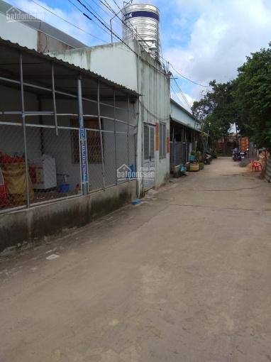 Cho thuê nhà trọ Phú Lợi, Thủ Dầu Một, Bình Dương ảnh 0