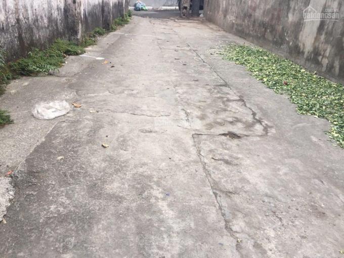 Bán đất Thượng Cát, Long Biên 120m2, phân lô đẹp ngay chợ