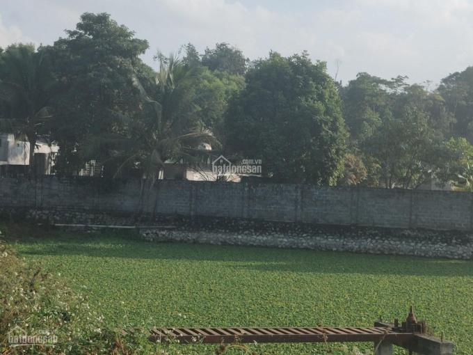 Cần bán trại lợn tại xã Thành Lập, H. Lương Sơn, Hòa Bình