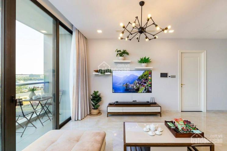 Bán gấp biệt thự có 1 - 0 - 2 mặt tiền phố Tây Thảo Điền, DT 12x15.5 nở hậu, HĐT 65tr/th. Giá 22 tỷ ảnh 0