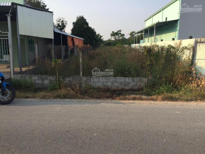 10x53=530m2, SHR mặt tiền đường Bùi Thị Diệt, xã Phạm Văn Cội, Củ Chi