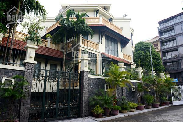Bán nhà HXH Tôn Thất Tùng, P. Phạm Ngũ Lão, Q.1, DT 8m x 20m, XD H 8L, giá bán 36 tỷ
