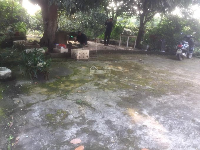 Cần tiền bán rẻ tổng diện tích 1248m2/400m2 đất ở có nhà cấp 4 tại Lương Sơn, Hòa Bình: 0984538309