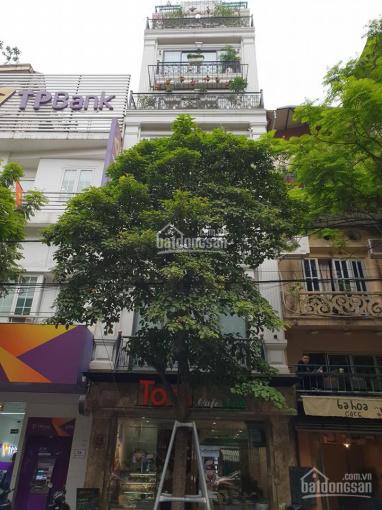 Cho thuê nhà mặt phố Nguyễn Du 115m2 mt 10m nhà 7 tầng
