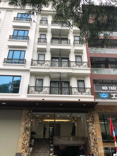 Cho thuê nhà mới xây mặt phố Phan Kế Bính, Cống Vị, Ba Đình 70m2 x 8T + 1 hầm, 60tr/th, thang máy