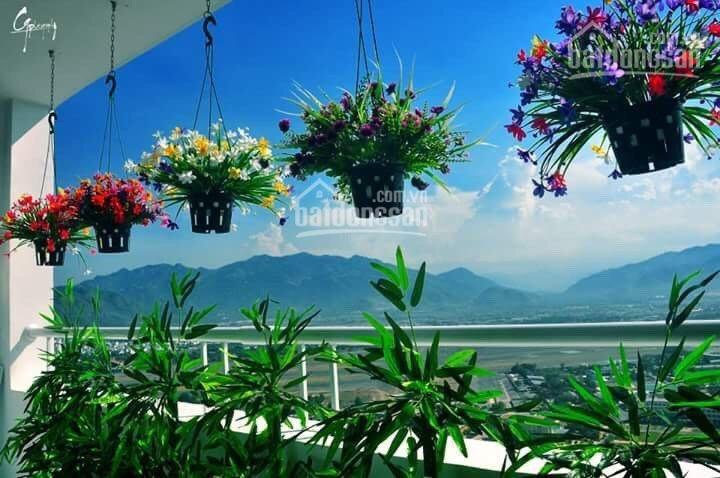 Tổng hợp nguồn mặt bằng vị trí đẹp, giá tốt cần cho thuê tại Nha Trang. LH: 0982497979 Ms Vy