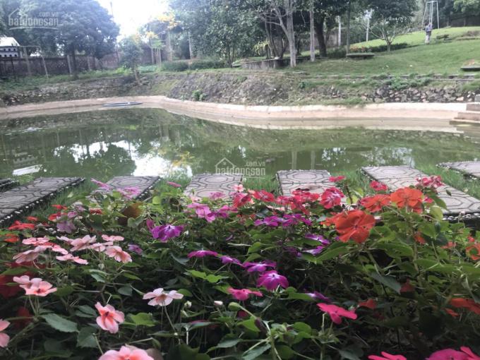 Cần bán khu nghỉ dưỡng biệt thự đẹp DT 3000m2 toạ lạc, Yên Bài HN. Giá 4,5 tỷ, sổ đỏ chính chủ