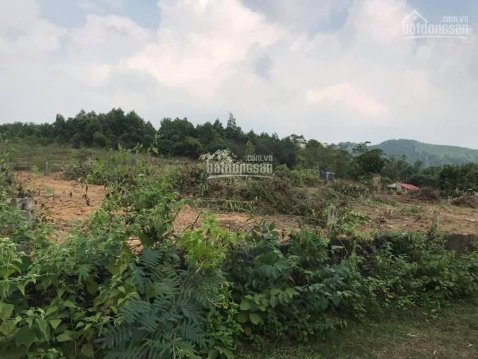 Chỉ 1,2 tỉ cho 2354m2 đất thổ cư sổ đỏ làm trang trại - nghỉ dưỡng xã Ngọc Thanh Phúc Yên Vĩnh Phúc