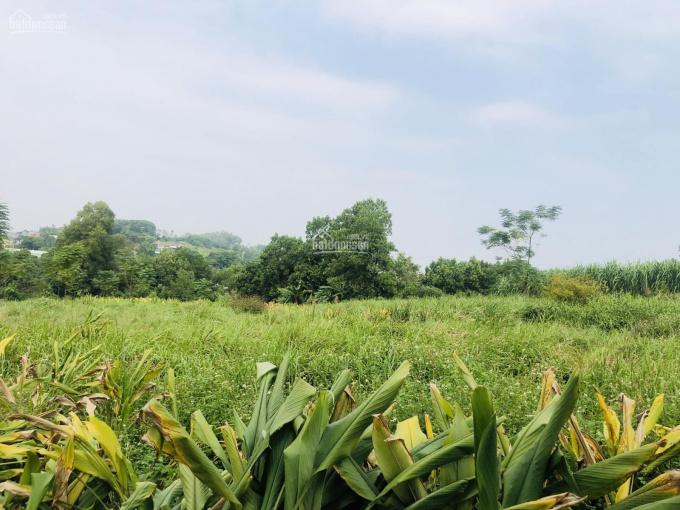 Bán 751.6m2 đất thổ cư tại xã Hòa Thạch, Quốc Oai, Hà Nội, DT: 751.6m2