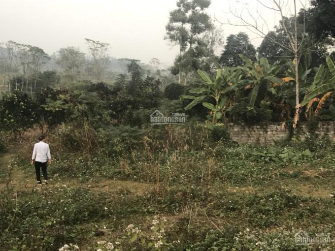 Cần bán lô đất 1000 - 2800m2 tại Yên Bình, Thạch Thất, Hà Nội. Đất ở 500m2, view cánh đồng