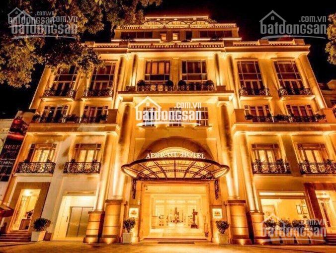 Bán khách sạn 2* đường Hoàng Việt (Đệ Nhất), Q. Tân Bình, DT 14mx20m, 8 lầu, TN 350tr/th, chỉ 62 tỷ