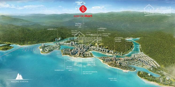 Chủ đầu tư Bim Group mở bán chung cư Bãi Cháy, Hòn Gai, Hạ Long. LH 0792712822