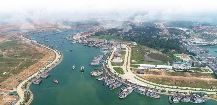 5 lô đất nền sổ đỏ trực diện mặt biển, cảng Tuần Châu