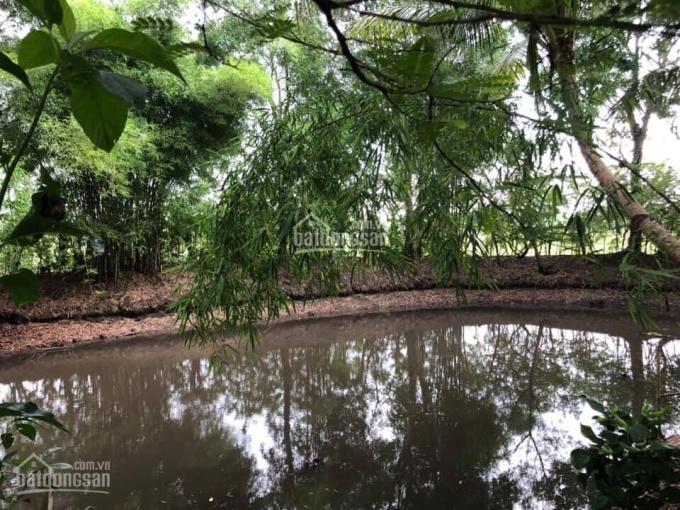 Cần bán một số vườn nghỉ dưỡng, đất trang trại, làm kho tại TP. Long Khánh, Đồng Nai, LH 0943319977